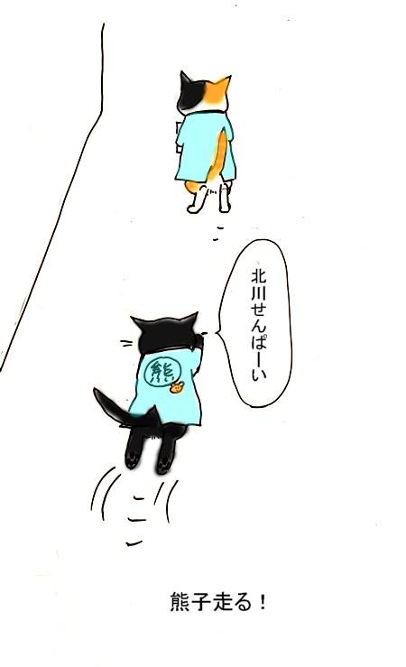 Sekuhara_2013_1024_2