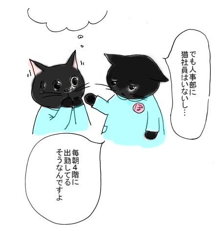 Sekuhara_2013_1108